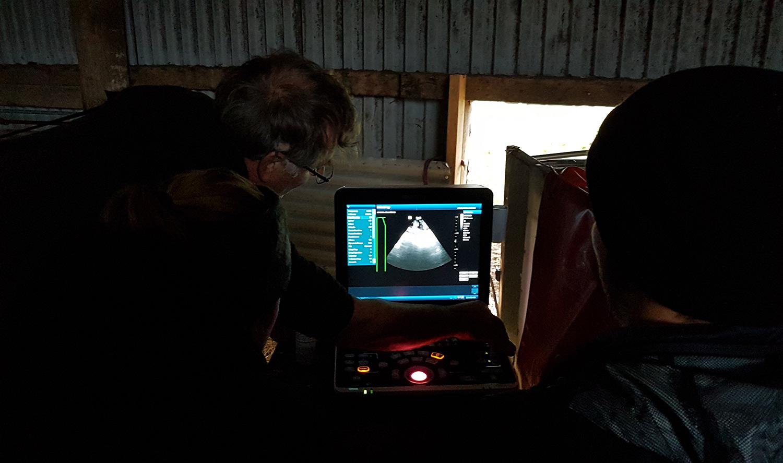 scanningGotland2